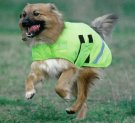 Equiflector® Dog Coat